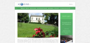 creazione-sito-web-acque-vive